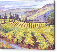 Napa Valley Vineyards Acrylic Print by David Lloyd Glover