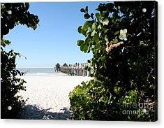 Naples Pier View Acrylic Print by Christiane Schulze Art And Photography