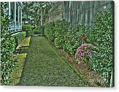 Narrow Urban Garden Acrylic Print