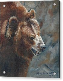 Nate - The Bear Acrylic Print by Lori Brackett