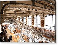National Museum Of Natural History - Paris France - 011319 Acrylic Print