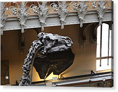 National Museum Of Natural History - Paris France - 011324 Acrylic Print