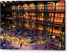 National Museum Of Natural History - Paris France - 011362 Acrylic Print by DC Photographer