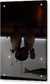 National Museum Of Natural History - Paris France - 011385 Acrylic Print by DC Photographer