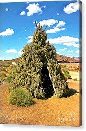 Native American Desert Cedar Lodge Acrylic Print by John Malone