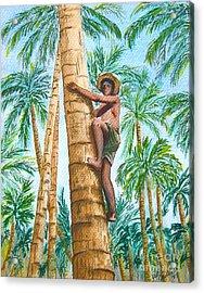 Native Climbing Palm Tree Acrylic Print