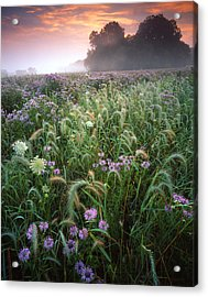 Native Prairie Sunrise Acrylic Print