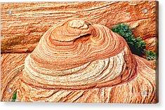 Natural Abstract Canyon De Chelly Acrylic Print by Bob and Nadine Johnston