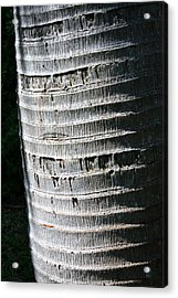 Acrylic Print featuring the photograph Natural Art by Karen Nicholson