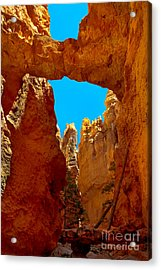 Natural Bridge Bryce Acrylic Print by Robert Bales