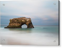 Natural Bridges State Beach  Acrylic Print