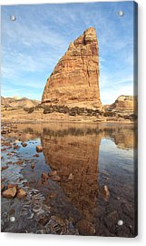 Natural Elements Acrylic Print by Darryl Wilkinson