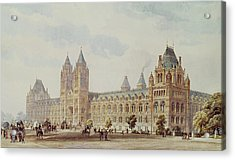 Natural History Museum  Acrylic Print by Alfred Waterhouse