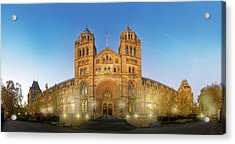 Natural History Museum Acrylic Print by Natural History Museum, London