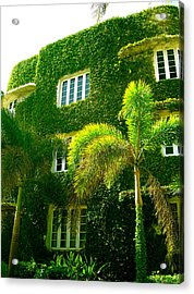 Natural Ivy House Acrylic Print
