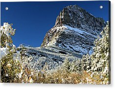 Natural Picture Frame Acrylic Print by Adam Jewell