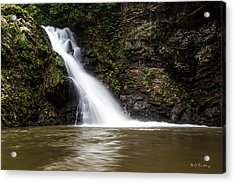Natural Pool 1 Acrylic Print by Bill Cantey