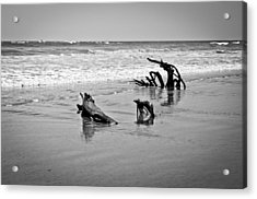 Natural Sculpture Acrylic Print by Lana Enderle