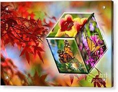 Natural Vibrance Acrylic Print
