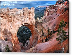Acrylic Print featuring the photograph Natural Wonders by Barbara Manis