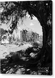 Natural Wood Frame Bw Acrylic Print by Mel Steinhauer