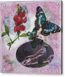 Nature 1 Acrylic Print