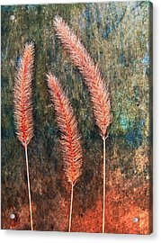Acrylic Print featuring the digital art Nature Abstract 15 by Maria Huntley