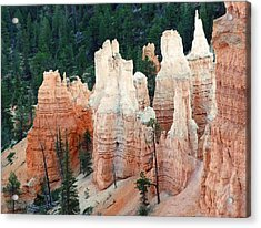 Nature Art Sculpture Acrylic Print by Judith Russell-Tooth
