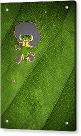 Nature Frame Acrylic Print by Wilianto