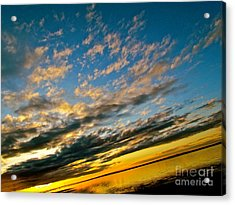 Nature Grasping Acrylic Print by Q's House of Art ArtandFinePhotography
