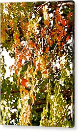 Nature In The City Acrylic Print by Jocelyne Choquette