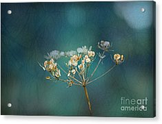 Nature Is Art Acrylic Print