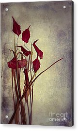 Nature Morte Du Moment  01 - Pr03 Acrylic Print