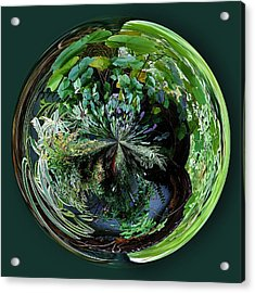 Nature Orb Acrylic Print by Paulette Thomas