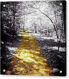 #nature #outdoors #trail #sunshine Acrylic Print