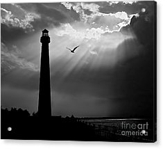 Nature Shines Brighter In Black And White Acrylic Print by Mark Miller