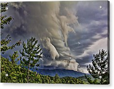 Nature Showing Off Acrylic Print by Tom Culver