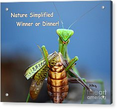 Nature Simplified Acrylic Print by Patrick Witz