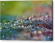Nature Sparkles Acrylic Print by Melanie Moraga