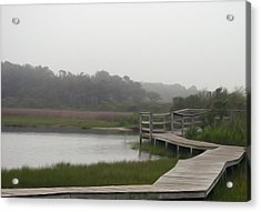 Acrylic Print featuring the photograph Nature Walk by Kelvin Booker