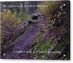 Nature Walk Acrylic Print by Tom Trimbath