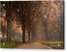 Nature Woodlands Autumn Fall Landscape Trees Acrylic Print by Kathy Fornal