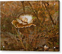 Acrylic Print featuring the digital art Nature's Artistry At Work by J Larry Walker