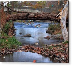 Nature's Bridge Acrylic Print