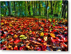 Natures Carpet In The Fall Acrylic Print by Dan Friend