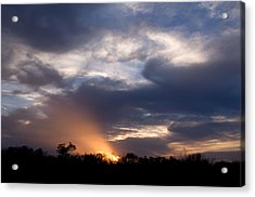 Nature's Flashlight Acrylic Print by Kelly Kitchens