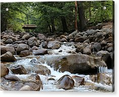 Acrylic Print featuring the photograph Nature's Flow  by Christy Pooschke