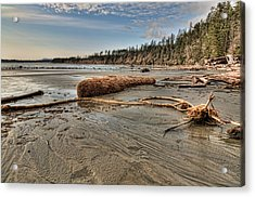 Natures Garbage Acrylic Print by James Wheeler