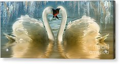 Natures Love Acrylic Print by Elaine Manley