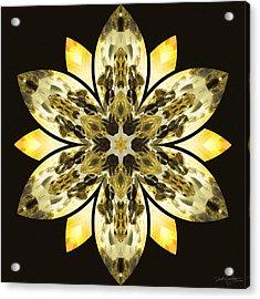 Nature's Mandala 57 Acrylic Print
